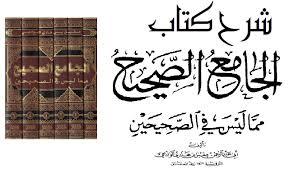شرح كتاب الجامع الصحيح مما ليس في الصحيحين للإمام الوادعي